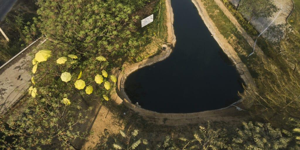 Fish Pond at Vedatya